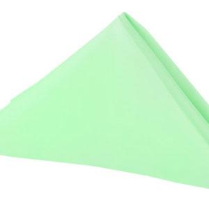 Mint Green Lamour